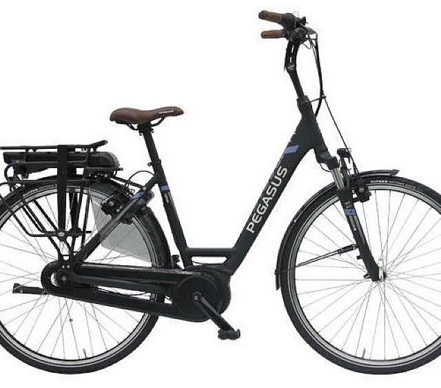 Pegasus E-Bike
